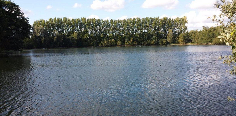 Eendenmeer